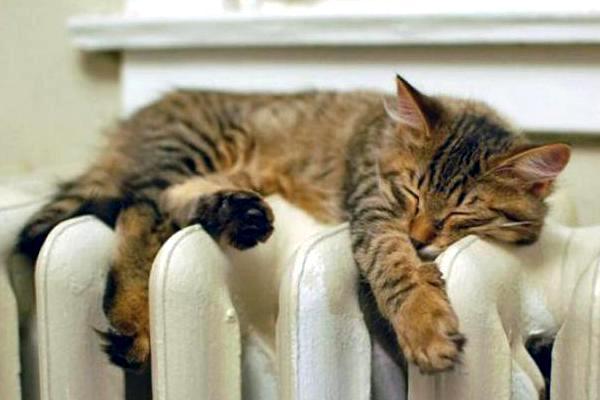 Шановні споживачі, подбайте про тепло у ваших будинках заздалегідь!
