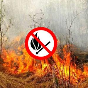 Небезпека при спалюванні сухостою!